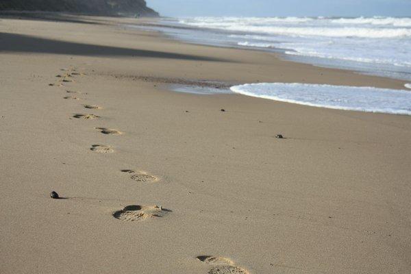 Carti si jocuri pe plaja